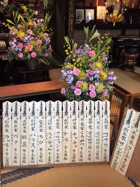 ペット葬儀のペットマザー 大阪市中央区の法要